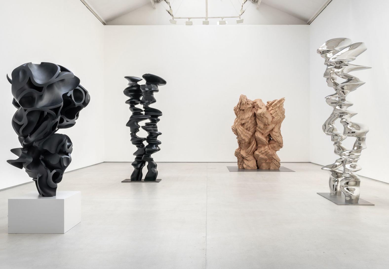 "Tony Cragg ""Inhabitants"" in Gallery Thaddaeus Ropac"