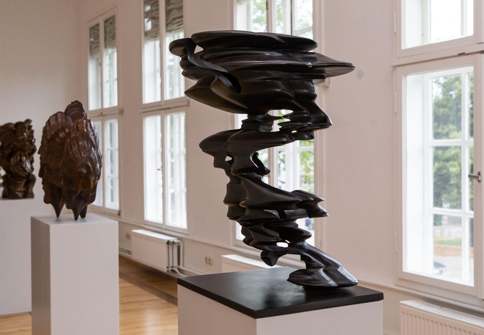 "Tony Cragg - ""Points of View"" im Schloss Wolfenbüttel"