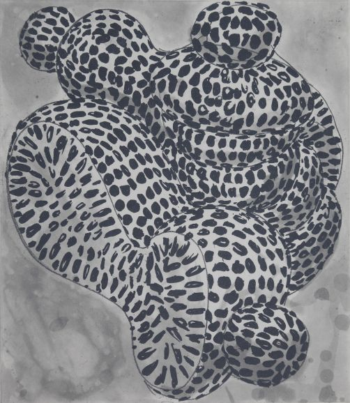 Forminifera